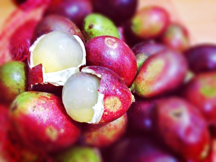 sekali ada toko buah yang menjual buah matoa. Matoa merupakan buah ...
