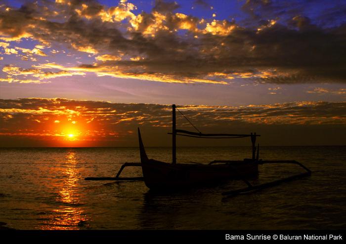 Baluran: pantai bama
