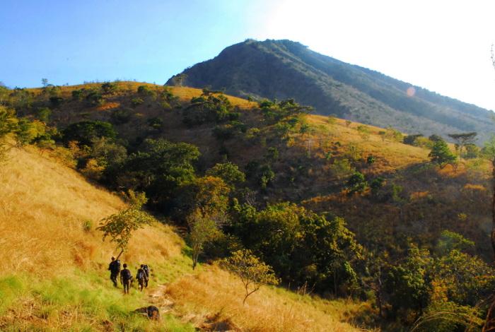 talpat-hill-baluran-NP