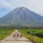 7 Gunung Tertinggi di Pulau Jawa Yang Selalu Menunggu Kedatanganmu