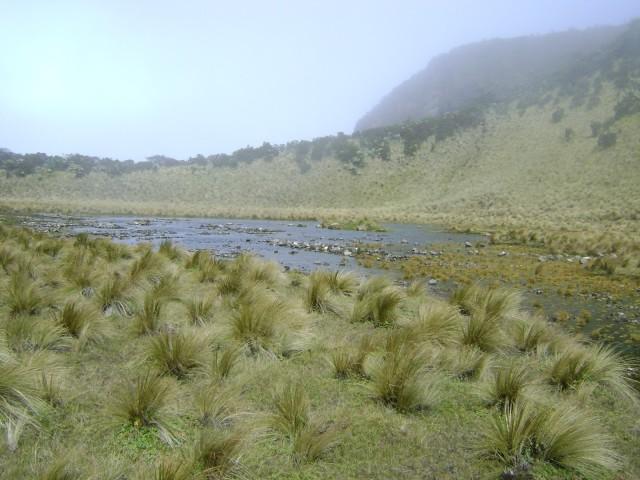 Foto: http://www.himalaya-adventure.org/2016/02/rute-pendakian-gunung-lawu.html