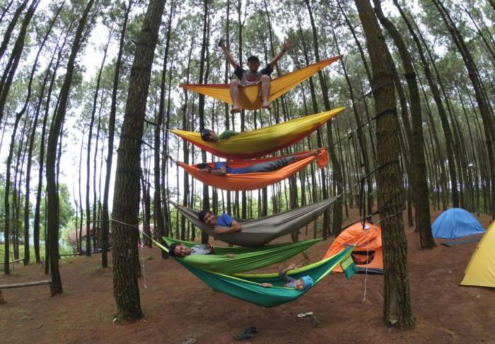 Foto di atas hammock
