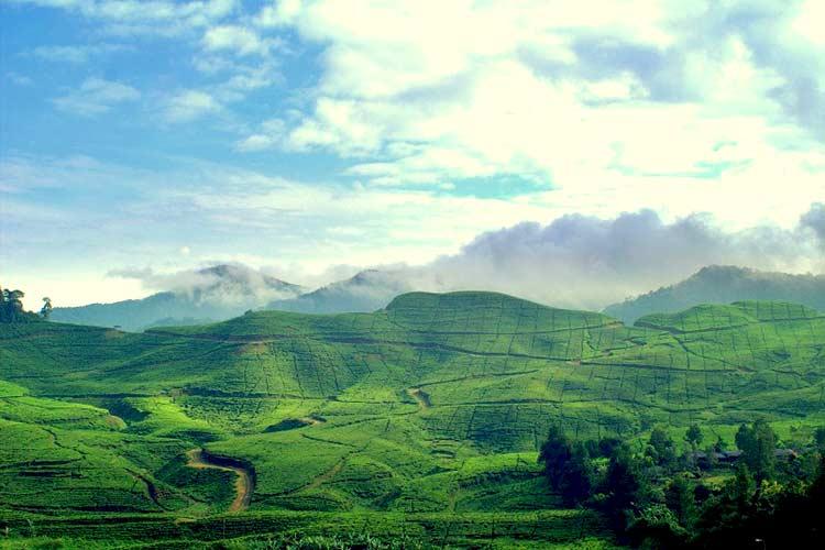 8 Tempat Wisata Bernuansa Alam Di Bogor Yang Membuat Liburan Jadi Lebih Seru