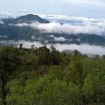 Gunung Lawu, Gunung Cantik Pemisah Jawa Tengah dan Jawa Timur