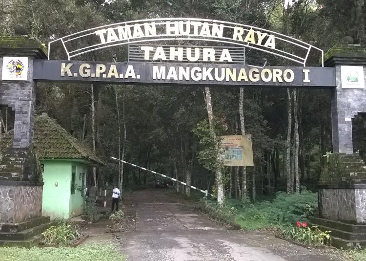 Tahura, Karanganyar. Hutan Wisata Yang Asik Untuk Makrab