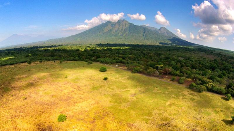 Taman Nasional Baluran, Situbondo. Afrika Versi Indonesia