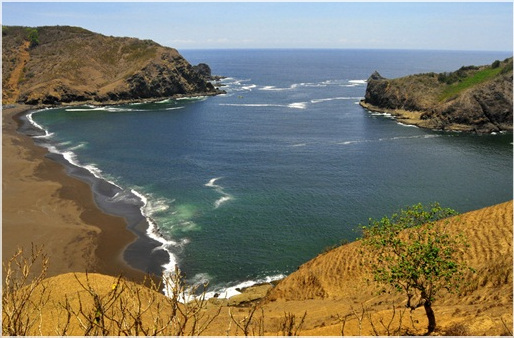 Pantai Payangan, Pantai Cantik Dengan Padang Sabana Di Jember