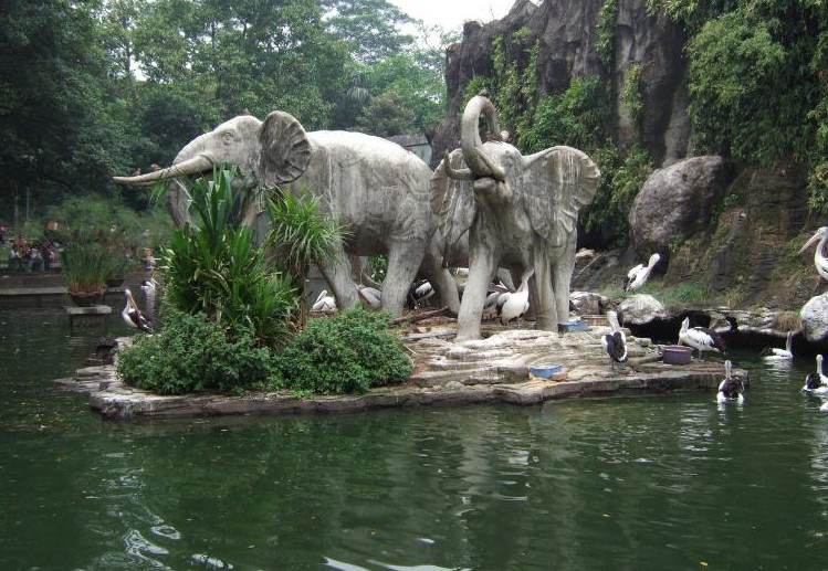 Surabaya_Zoo2