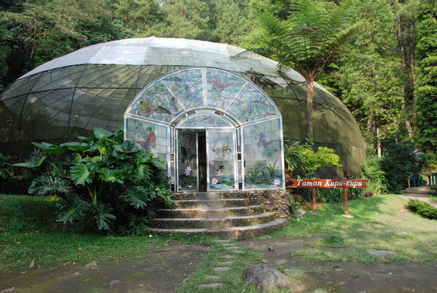 Taman Kupu-kupu Curug Cilember