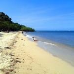 Pantai Bama, Pantai Cantik Di Taman Nasional Baluran