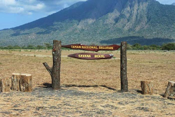 5 Potensi Wisata Alam Di Taman Nasional Baluran