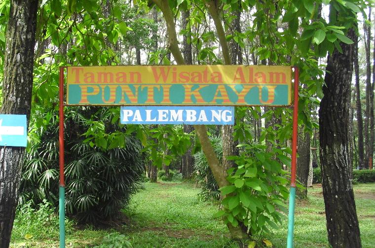 taman hutan wisata punti kayu