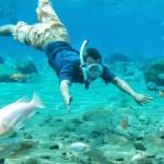 Umbul Ponggok, Snorkeling Murah Meriah Ala Klaten