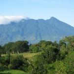 3 Taman Nasional Yang Dapat Kamu Jelajahi di Jawa Barat