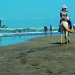 Deretan Pantai Cantik Yang Akan Melengkapi Liburanmu di Kebumen