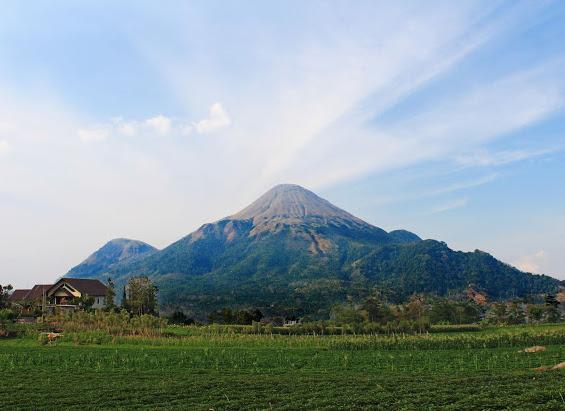 Gunung Penanggungan. Si Mungil Nan Cantik Dari Jawa Timur