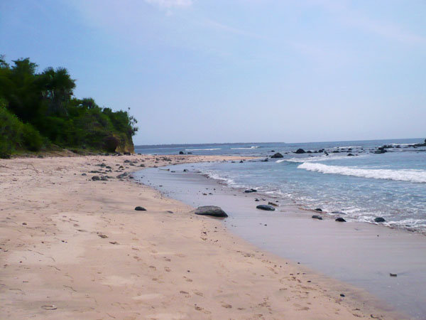 Pantai Pancur. Sebuah Keindahan Dibalik Alas Purwo Yang Mistis