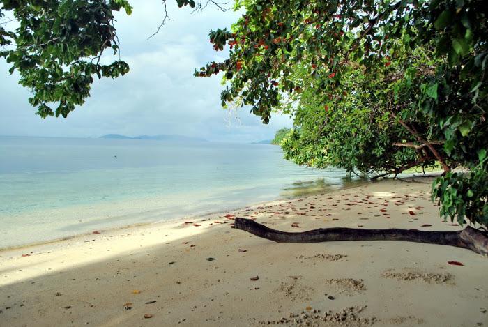 pantai waiwo