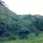 Dua Padang Sabana Cantik Yang Akan Kita Lewati Saat Mendaki Gunung Merbabu Via Selo