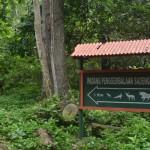 12 Taman Nasional Yang Bisa Kamu Jelajahi di Pulau Jawa
