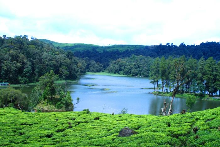 Situ Patenggang, Danau Cantik Diantara Kebun Teh Ciwidey