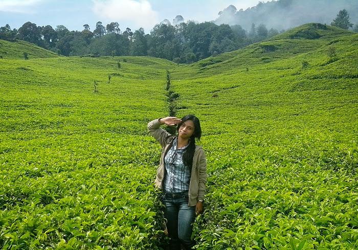 7 Tempat Wisata Di Kawasan Ciwidey, Bandung