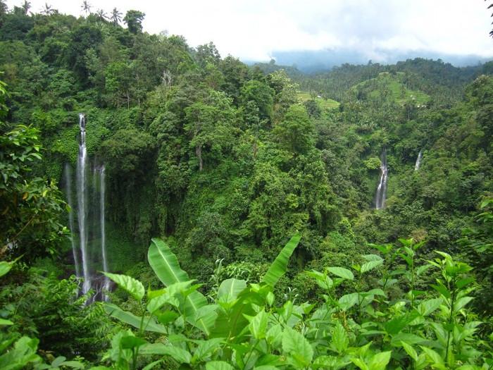 Air Terjun Sekumpul Yang Elegan di Buleleng, Bali
