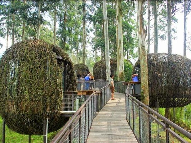 Dusun Bambu, Ekowisata Super Keren di Lembang Bandung