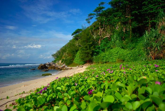 Pantai Momong
