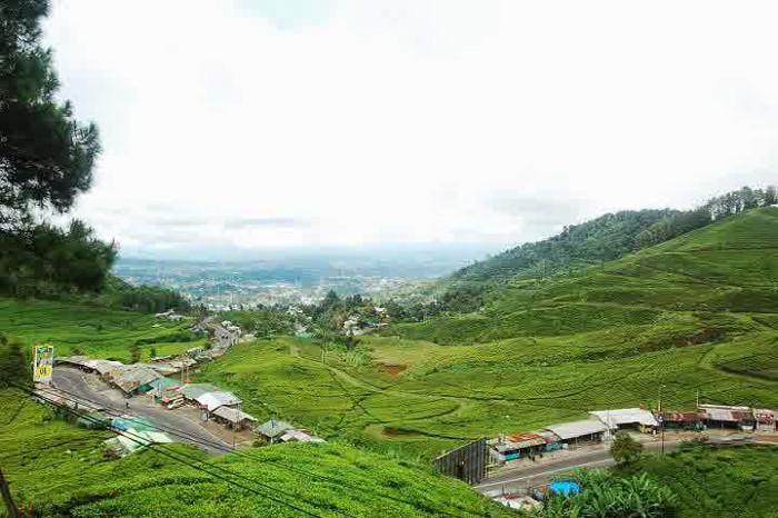 Taman Riung Gunung Puncak Bogor