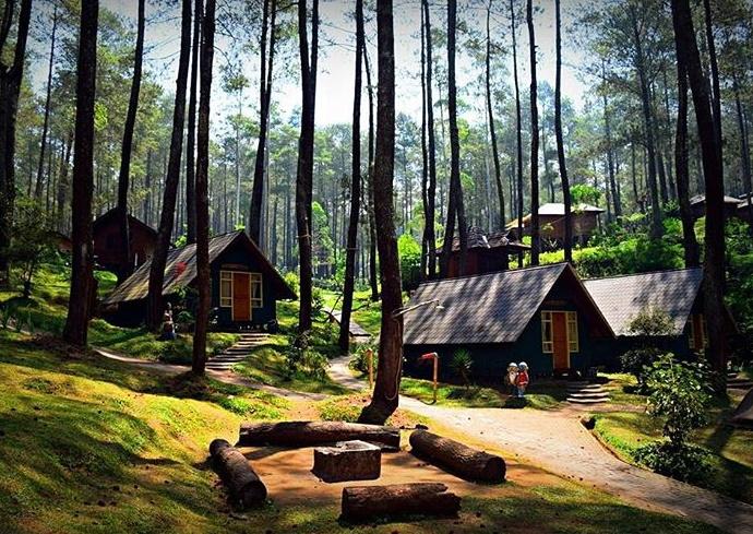 Menginap di Rumah Hobbit Ala Grafika Cikole