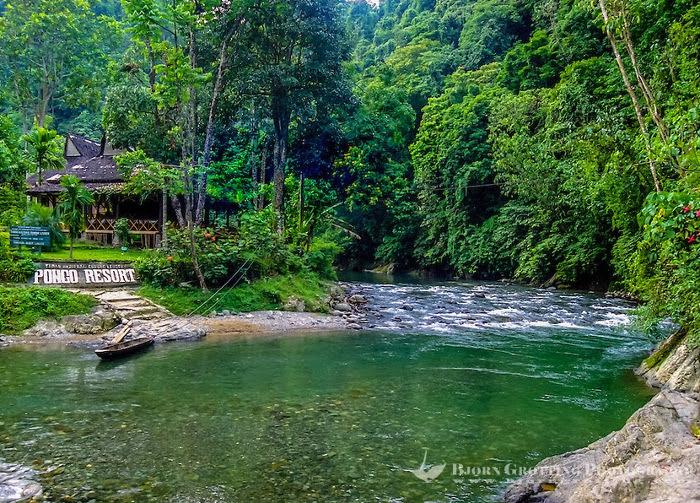 Bukit Lawang. Pintu Gerbang Menuju Kerajaan Orangutan di Sumatra