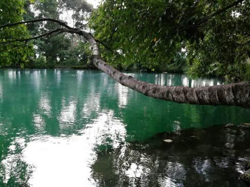 Danau Linting. Danau Berair Hangat di Deliserdang, Sumatra Utara