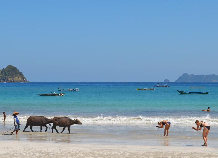 7 Bukti Bahwa Lombok Adalah Pulau Yang Keren