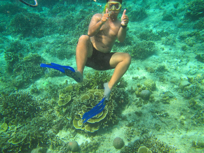 underwater pulau tabuhan