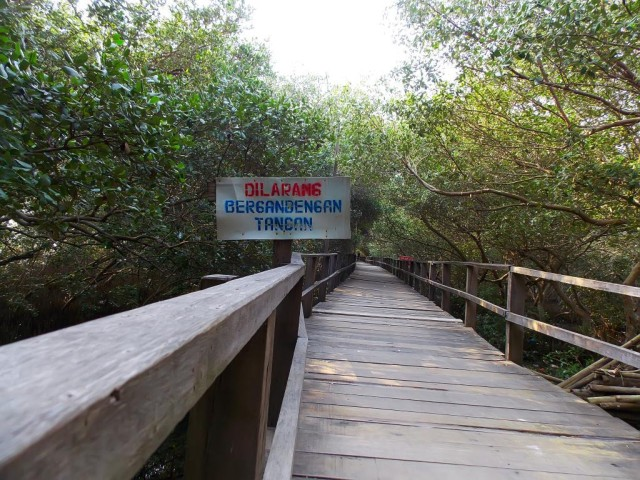 Foto: https://yasiryafiat.wordpress.com/2014/10/16/taman-mangrove-morosari-demak-jawa-tengah/