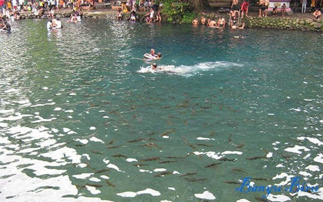 Foto: http://1.bp.blogspot.com/-tYAr8A2i-Pg/ViiIwQx_1KI/AAAAAAAAAUA/yus1C-BXsa4/s1600/pemandian-banyu-biru-pasuruan.jpg