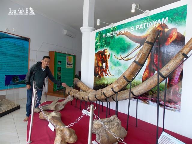 Foto: https://yasiryafiat.wordpress.com/2015/01/09/mengenal-sejarah-masa-lampau-situs-patiayam-di-museum-purbakala-kudus-jawa-tengah/