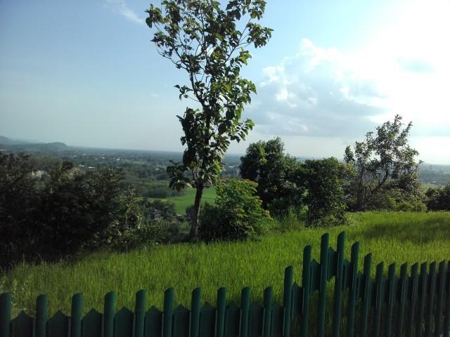 Pemandangan di sekitar Candi Barong
