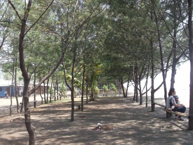 Foto: http://3.bp.blogspot.com/-G6yigTncuBY/VCUjr_-ETbI/AAAAAAAAA5Y/GR6YHd2OIHM/s1600/DSCF3823%5B1%5D.JPG