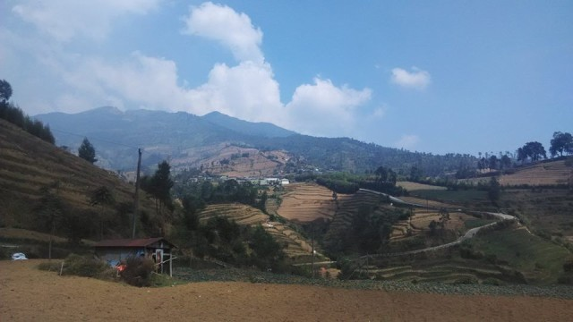 Foto: http://santridanalam.blogspot.co.id/2016/04/pendakian-gunung-prau-via-wates.html