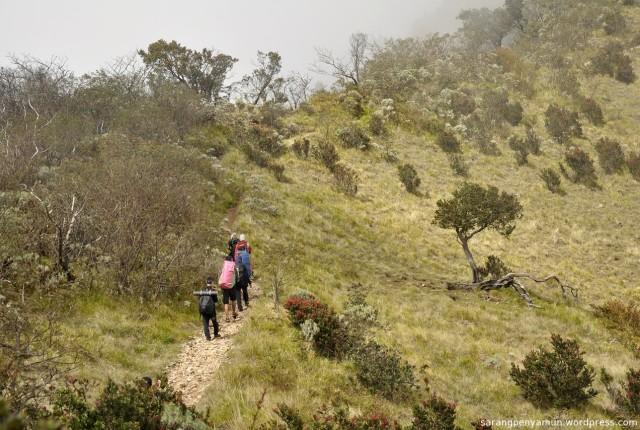 3 Jalur Pendakian Yang Bisa Kamu Pilih Untuk Mencapai Hargo Dumilah, Titik Tertinggi Gunung Lawu