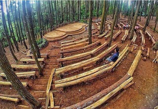 Foto-foto di Hutan Pinus Imogiri Sekarang Dikenakan Tarif Khusus