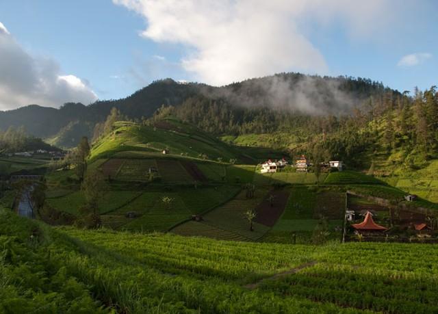 14 Tempat Wisata di Sekitar Tawangmangu