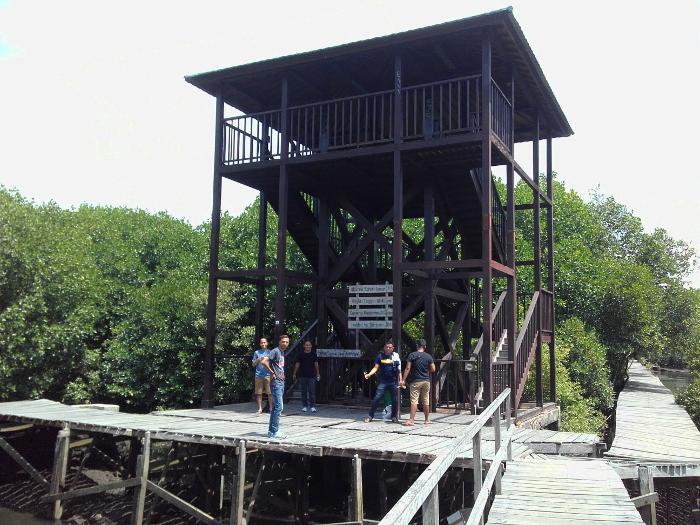 mangrove-bali-3