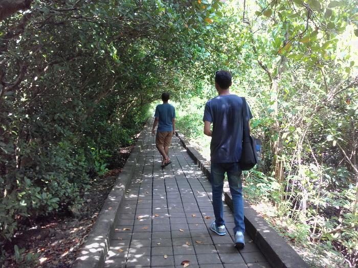 Panas-panas Santai di Hutan Mangrove Bali