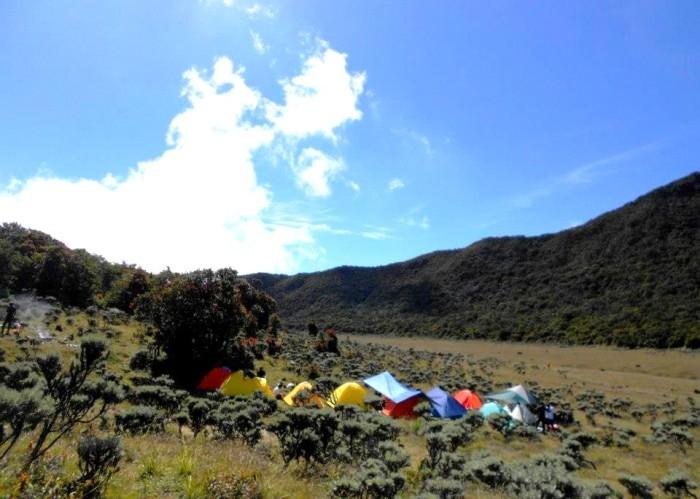 Syarat Baru Naik Gunung Gede-Pangrango: Dilarang Bawa Tisu Basah