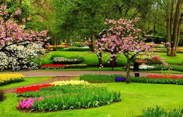 taman-bunga-nusantara