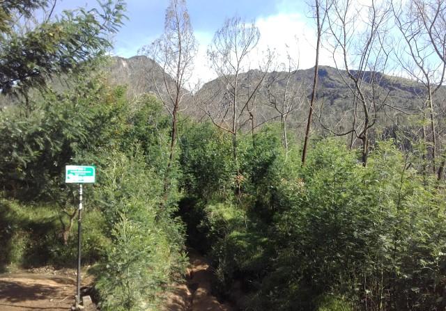 6 Gunung Populer Yang Tutup Di Awal Tahun 2017